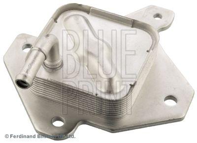 BLUE PRINT Oliekoeler, motorolie (ADT36148)