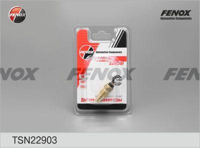 FENOX TSN22903