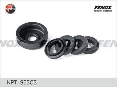 FENOX KPT1963C3