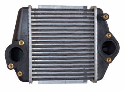 NRF Intercooler, inlaatluchtkoeler (30360)