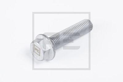 PE Automotive Schroef (045.775-00A)