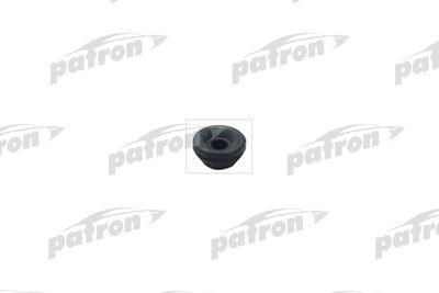 PATRON PSE4094