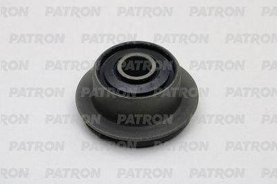 PATRON PSE10816