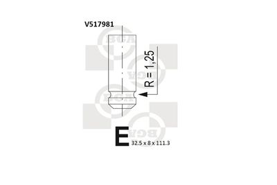 BGA V517981