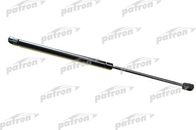 PATRON PGS128573