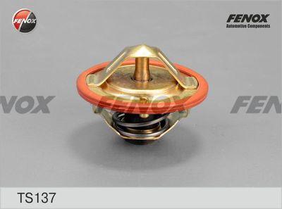 FENOX TS137