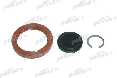 PATRON P18-0013