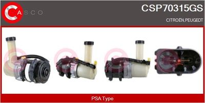 CASCO Servo pomp (CSP70315GS)