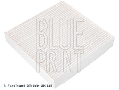 BLUE PRINT ADBP250033