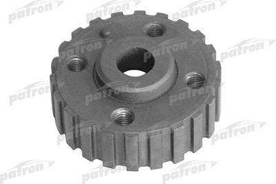 PATRON P31-0005