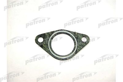 PATRON PG5-1009