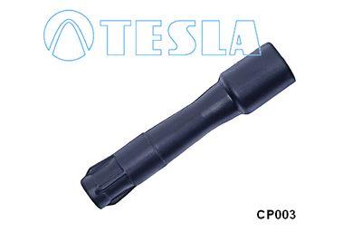 TESLA CP003