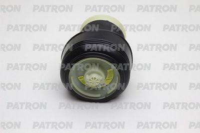 PATRON PAS1010