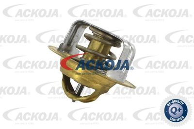 ACKOJA A32-99-1704