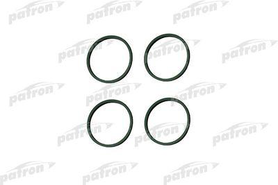 PATRON PG5-1016