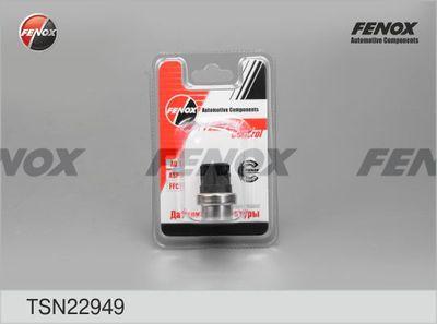 FENOX TSN22949