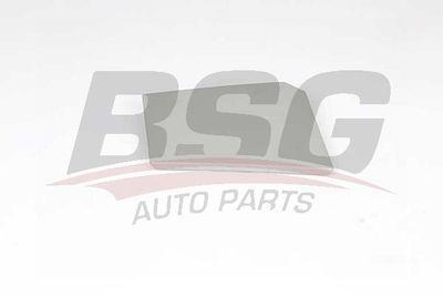 BSG Dop, brandstoftank (BSG 70-971-001)