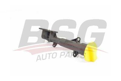 BSG BSG 65-720-204