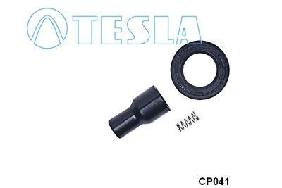 TESLA CP041