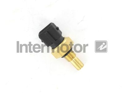 INTERMOTOR 55509